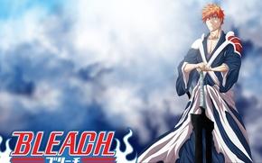 Picture sword, game, Bleach, anime, katana, man, boy, bankai, hero, asian, Kurosaki Ichigo, pose, manga, japanese, …