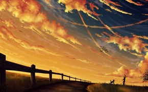 Picture dog, the game, art, guy, stick, birds, the fence, the evening, clouds, the sky, track, ...
