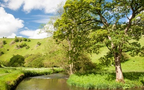 Picture the sky, grass, river, tree, hills, slope