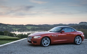 Picture nature, BMW, Roadster, bmw z4