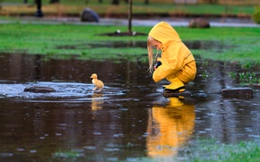 Picture rain, spring, April, girl, cloak, duck, New York