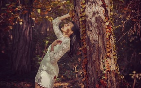 Picture forest, girl, tree, dress