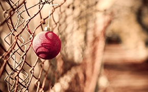 Picture toy, the fence, holiday