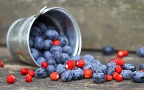 Picture berries, blueberries, strawberries, bucket