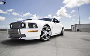 Picture Mustang, Ford, Cobra, Wheels, Incurve