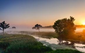Picture landscape, fog, river, morning