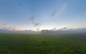 Picture field, fog, the plane, morning, The moon