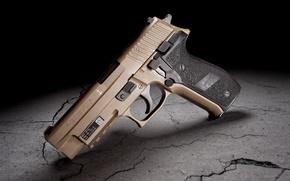 Picture gun, background, Sig Sauer, P226, Mk25
