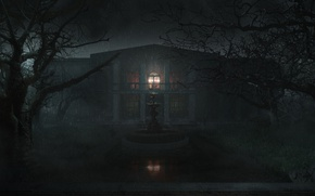 Picture light, trees, night, house, rain, fountain, gloomy