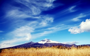 Picture field, the sky, grass, clouds, snow, mountain, peak, dry