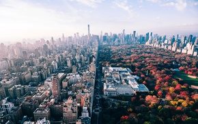 Picture autumn, the city, Park, USA, New York
