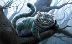Wallpaper smile, Alice in Wonderland, cat