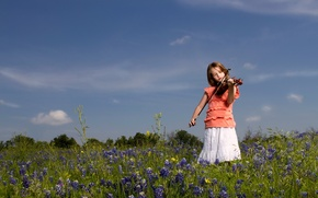 Picture field, mood, violin, girl