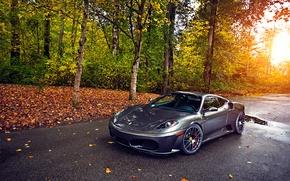 Picture Ferrari, Green, Sun, Autumn, Tuning, asphalt, Silver, 430, Wheels, Trees, Leaf