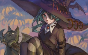Picture cat, girl, pumpkin, witch, halloween, Halloween