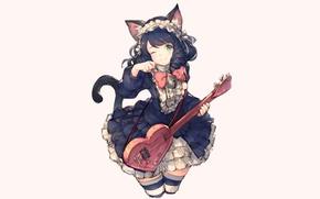 Picture cat, guitar, girl, junwool, show by rock, hijirikawa cyan