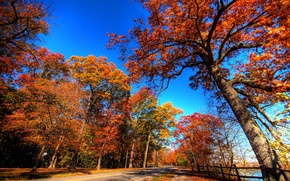 Picture road, autumn, the sky, leaves, trees, landscape