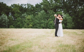 Picture field, grass, kiss, dress, costume, the bride, the groom