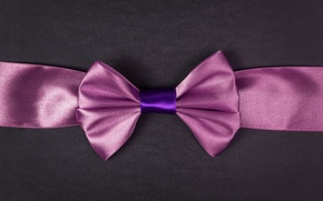 Picture purple, background, pink, widescreen, Wallpaper, mood, Shine, texture, tape, wallpaper, bow, bow, widescreen, background, full …