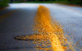 Picture road, autumn, asphalt, leaves, yellow, Luke