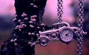 Picture machine, tree, watch, chain, car