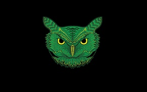 Picture green, owl, minimalism, head, black background, owl
