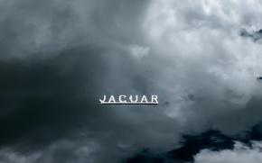 Picture machine, sign, the hood, jaguar