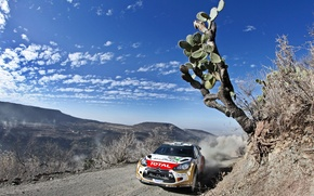 Picture The sky, Sport, Speed, Race, Day, Citroen, DS3, rally, WRC, Rally