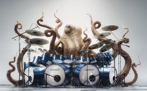 Picture eyes, mood, octopus, drums, octopus, drummer