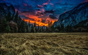 Picture mountains, nature, trees, CA, Yosemite National Park, USA, meadow, clouds, grass, Yosemite national Park, USA, ...