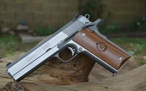 Picture weapons, Magnum, Magnum, 357, Coonan Classic