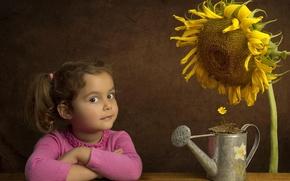 Picture flower, sunflower, girl, lake
