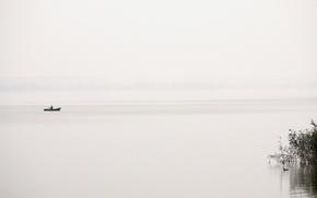 Picture fog, lake, boat, fisherman, duck