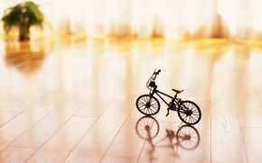 Picture bike, toy