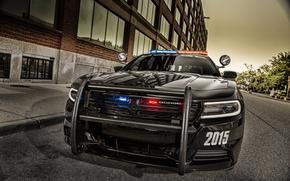 Picture face, black, Dodge, Dodge, Black, Charger, Pursuit, Challenger, 2015