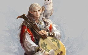 Picture owl, bird, elf, art, guy, ears, bard, lute