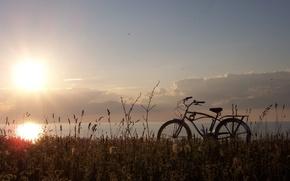Wallpaper the sun, bike, grass