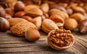 Picture nuts, shell, almonds, forest, walnut