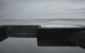 Picture sea, glass, minimalism