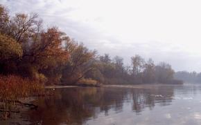 Picture autumn, water, landscape, fog, river, foliage, morning, haze