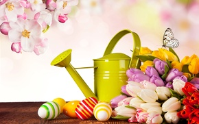 Picture photo, Flowers, Butterfly, Tulips, Easter, Eggs, Holidays