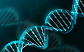 Picture model, DNA, blue, molecule