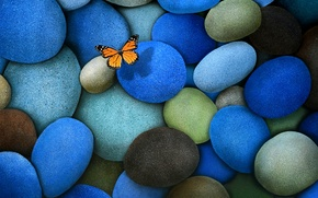 Picture stones, butterfly, blue, brown