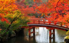 Wallpaper autumn, trees, bridge, pond, Park, stones, Japan, Kyoto