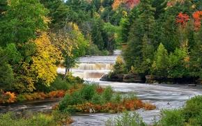 Wallpaper autumn, thresholds, river, trees, forest