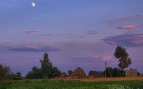 Wallpaper village, the moon, summer