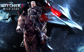 Picture Horse, Grass, Birds, Geralt, the witcher 3 wild hunt, The Witcher 3 wild hunt