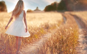 Picture road, field, summer, girl