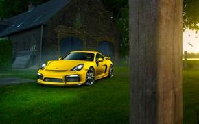 Picture Porsche, Cayman, Grass, Front, Color, Yellow, Summer, Supercar, GT4
