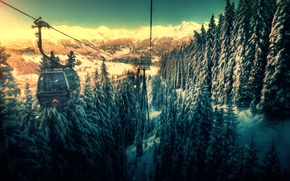 Picture forest, snow, mountains, treatment, the funicular, cable car, back to the valley